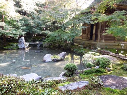 蓮花寺 池
