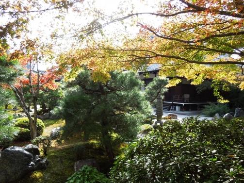 金戎光明寺庭園2