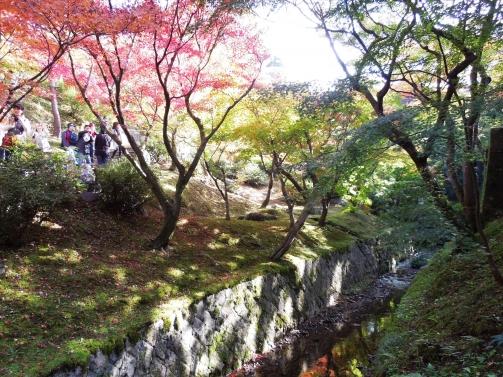 庭園の紅葉3