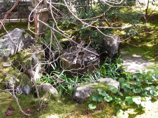 泉涌寺 御座所庭園1