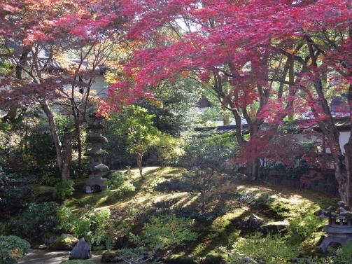 泉涌寺御座所庭園3