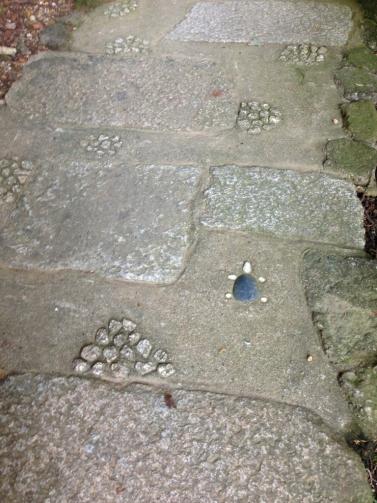 石畳のカメ