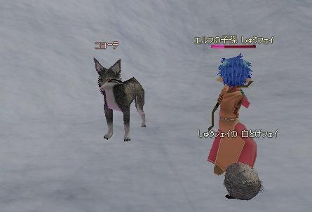 mabinogi_2010_09_27_012.jpg