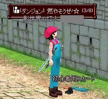 mabinogi_2010_10_25_012.jpg