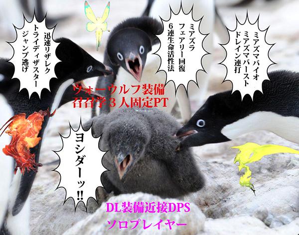 ペンギン-web