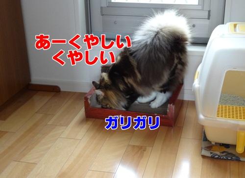 manner4_text.jpg
