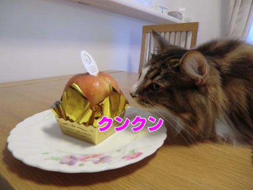 peach3_text.jpg