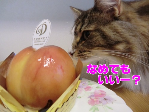 peach4_text.jpg
