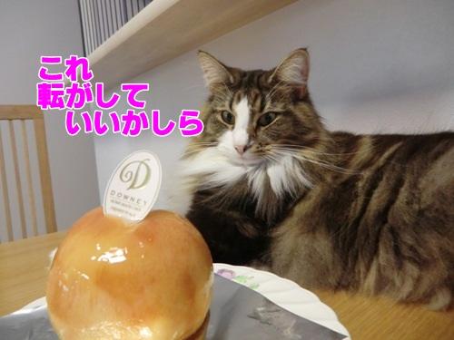 peach5_text.jpg