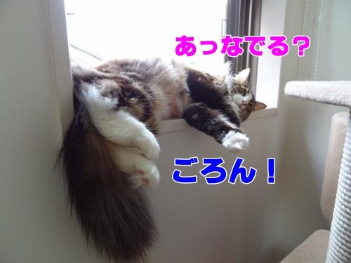 relax3_text.jpg