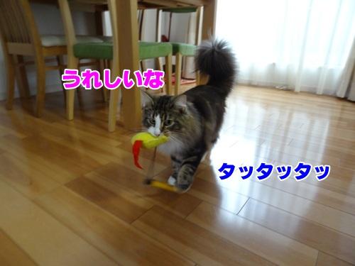 sakana_again4_text.jpg