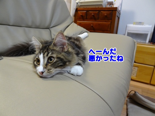 souji1_2text.jpg