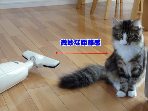 souji1_3text.jpg