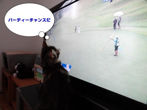television2_text.jpg