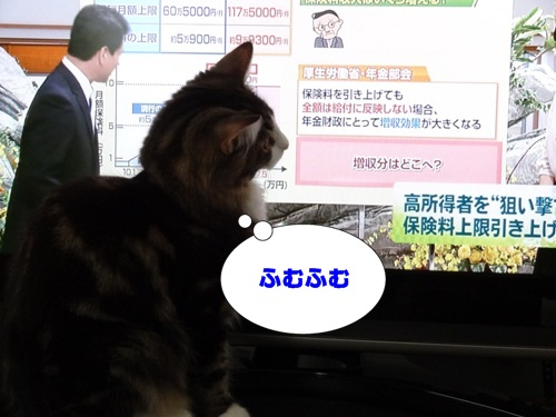 television4_text.jpg