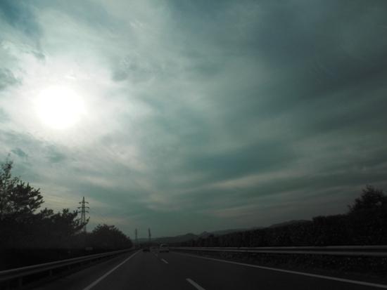 20141117 新しいワンコの迎えに栃木へ (7)