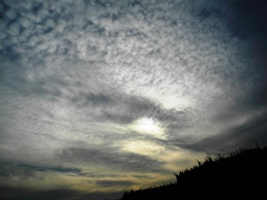 20141117 新しいワンコの迎えに栃木へ (9)