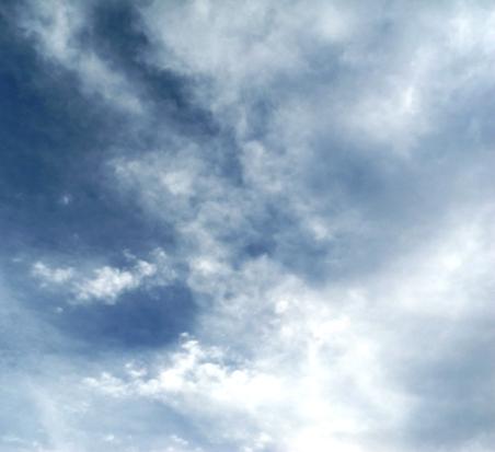 ブルーを荼毘に付した 20141204 (19)
