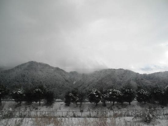 福井県へココロの迎え 20141221~22 (28)