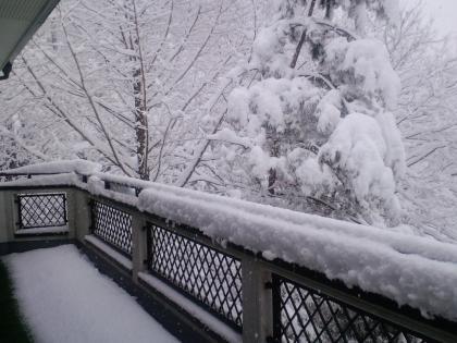 美しい大雪 (2)