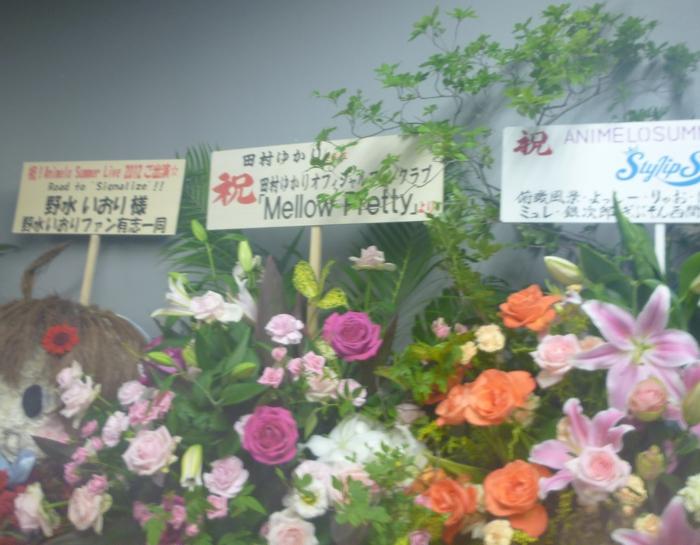 dejikame-2012082503.jpg