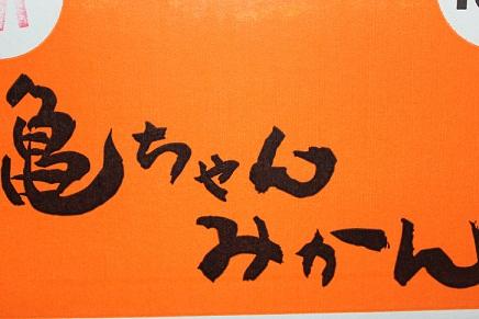 001_20120119195241.jpg