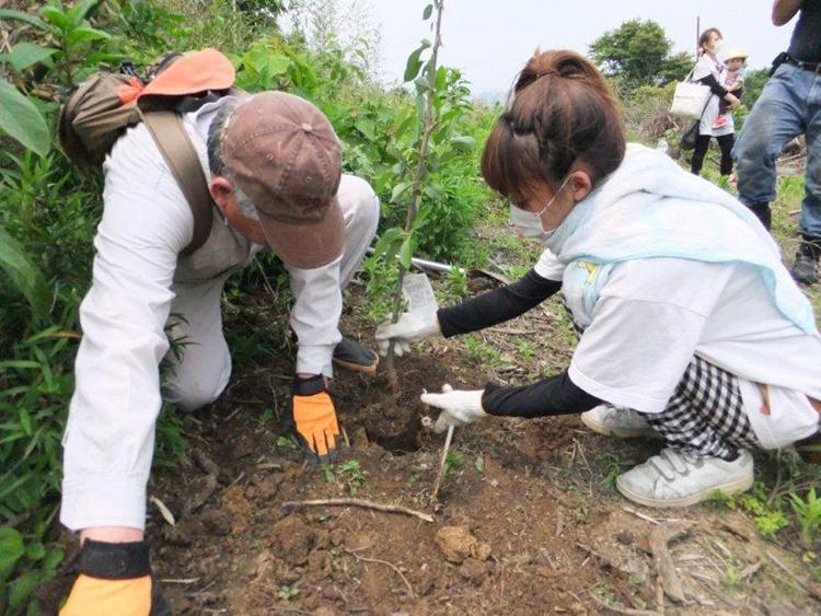 植樹の様子20110605