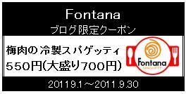 Fontana梅肉クーポン券