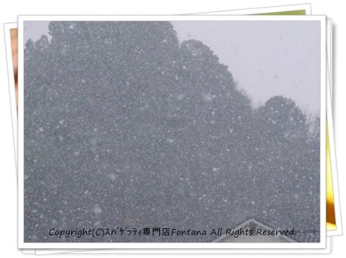 DSCF40171.jpg