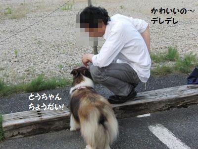 2010.7.4 とうちゃん 風呼ちゃんには甘いな!