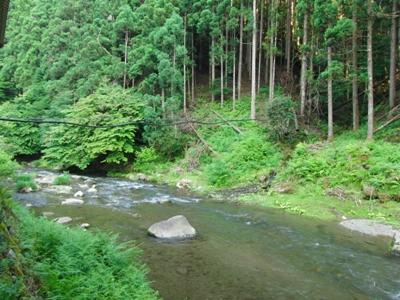 2010.7.7 川も綺麗