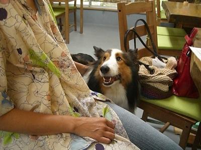 2010.8.14 2もちろんJoshくんの笑顔も