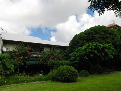 2010 沖縄 お庭から