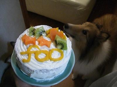 2010 10 5 fooの誕生日ケーキ