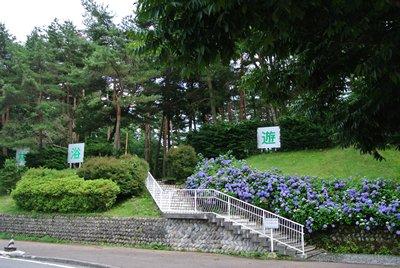 7.15 駒ヶ岳SAきれいよね