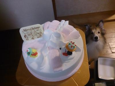 メリークリスマス ケーキ