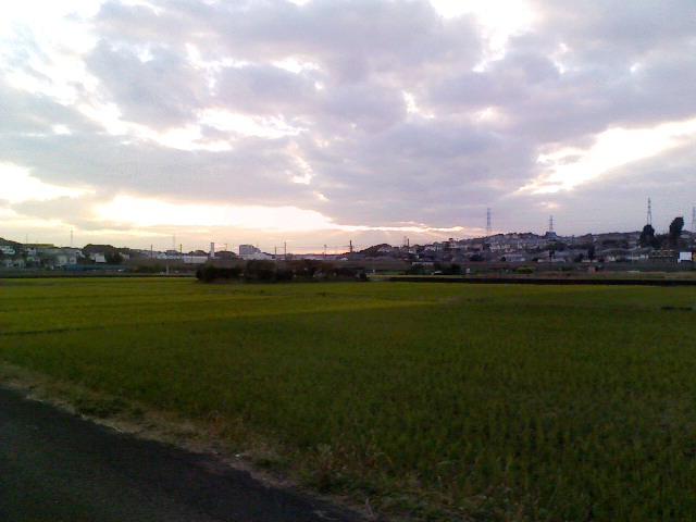 恩田川奈良川