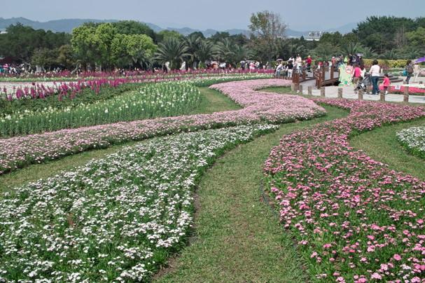 FlowerF945.jpg