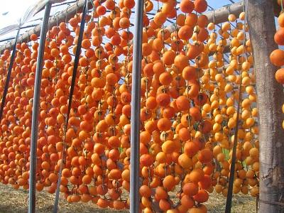 干し柿体験3