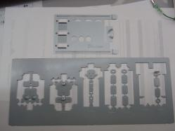 RIMG5052.jpg