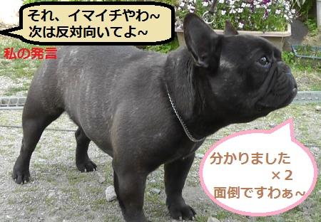 2012-04-29_074817(15)_convert_20120503130609_20120505093903.jpg