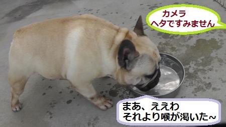 2012-05-06_170810(5)_convert_20120509221743.jpg