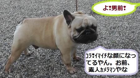 2012-05-06_173027(8)_convert_20120510042051.jpg