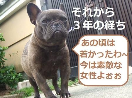 DSCF6702_20120419231800.jpg