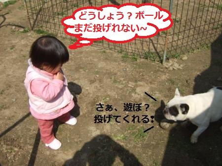 DSCF8711_convert_20120520103657_20120520124057.jpg