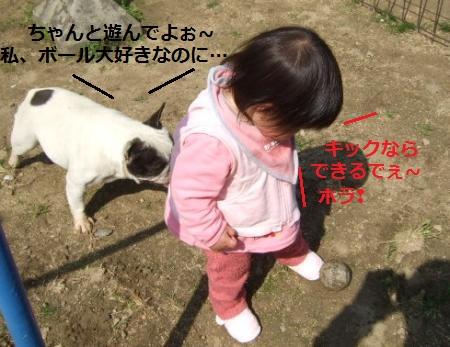 DSCF8715_convert_20120520103731.jpg