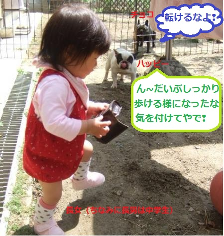 DSCF8803_convert_20120517062521.jpg