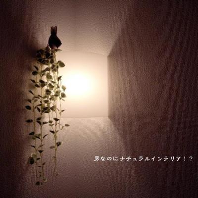 167_convert_20120719185158.jpg