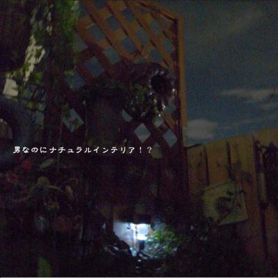 169_convert_20120723151233.jpg