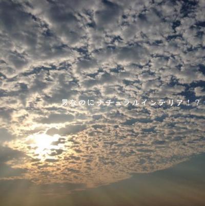 222_convert_20121019223924.jpg